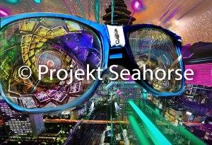 ProjektSeahorsePointOFView